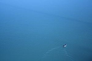 Lake Michigan - Copy